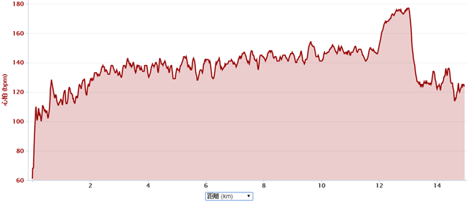 garmin-run-data-20150811-img-02